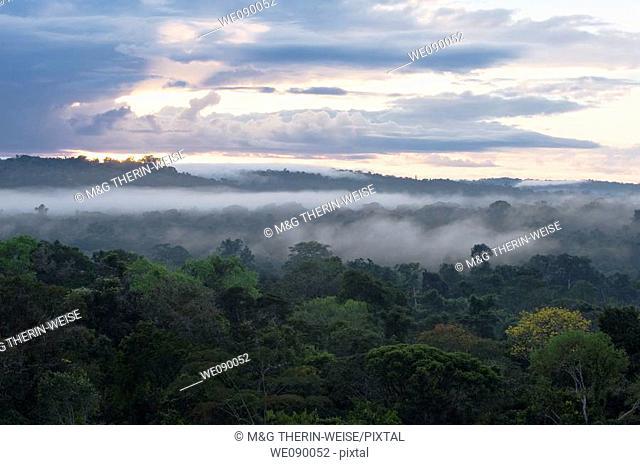 Sunrise over the the Amazon forest, Cristalino State Park, Alta Floresta, Mato Grosso, Brazil
