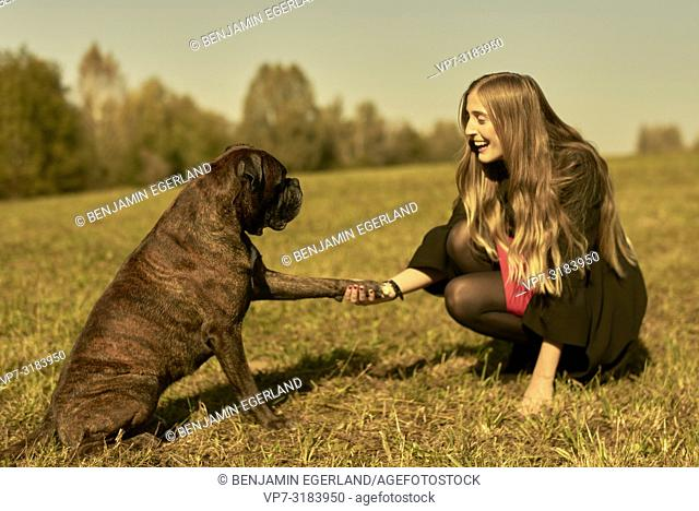 woman with dog on meadow, giving the paw, in Unterhaching, Munich, Bavaria, Germany