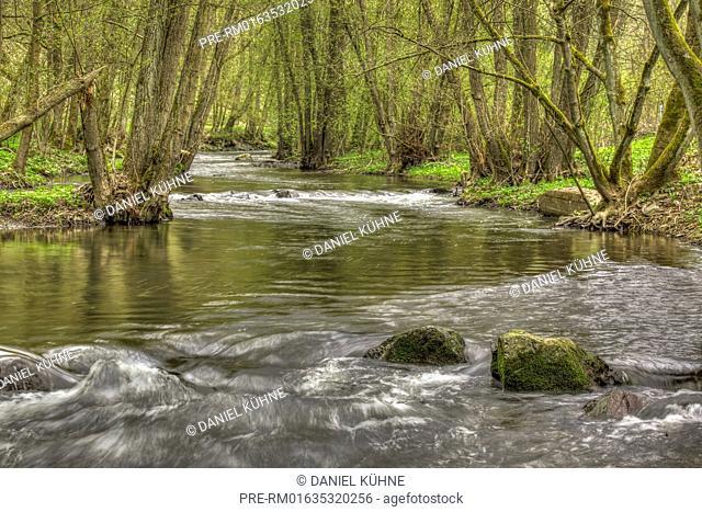Selke River, Harz District, Harz, Saxony-Anhalt, Germany / Selke, Landkreis Harz, Harz, Sachsen-Anhalt, Deutschland