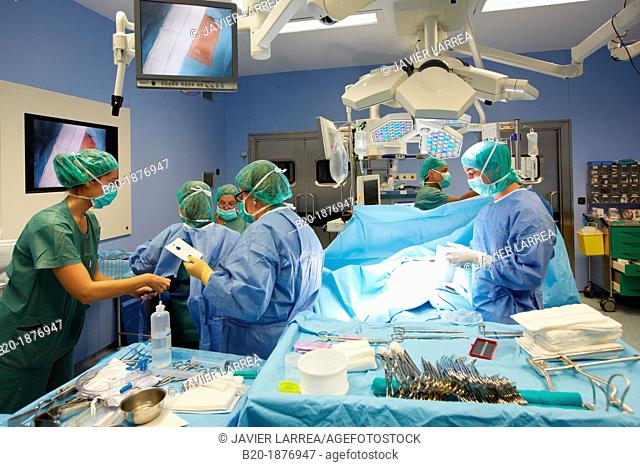 Intervention prostate, Urology operating room, Surgery, Hospital Donostia, San Sebastian, Gipuzkoa, Basque Country, Spain
