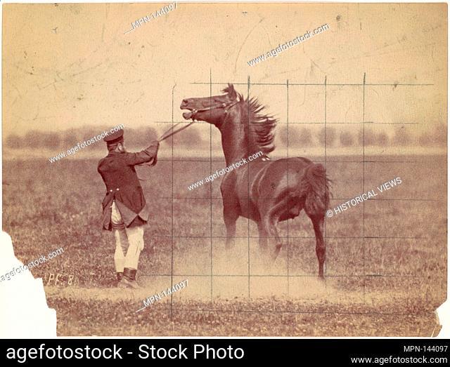 Horse. Artist: Ottomar Anschütz (German, Lissa (Leszno, Poland) 1846-1907 Berlin); Date: 1884; Medium: Albumen silver print; Classification: Photographs; Credit...