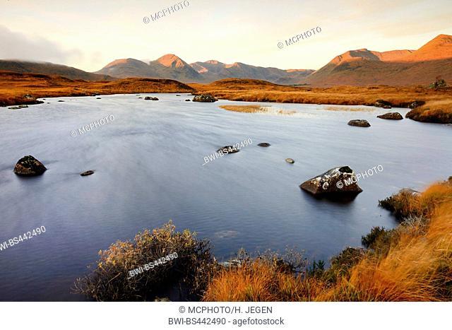 Rannoch Moor on Isle of Skye, United Kingdom, Scotland, Isle of Skye, Rannoch Moor