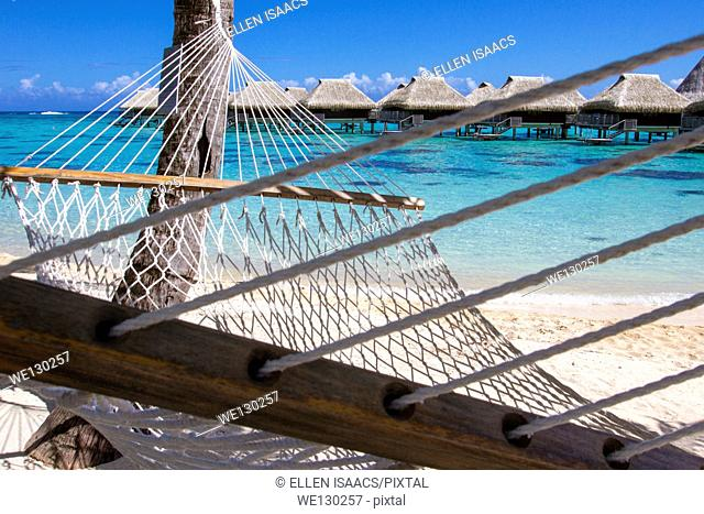 Rope hammock on a beach with overwater bungalows by the turquoise waters of Moorea in French Polynesia
