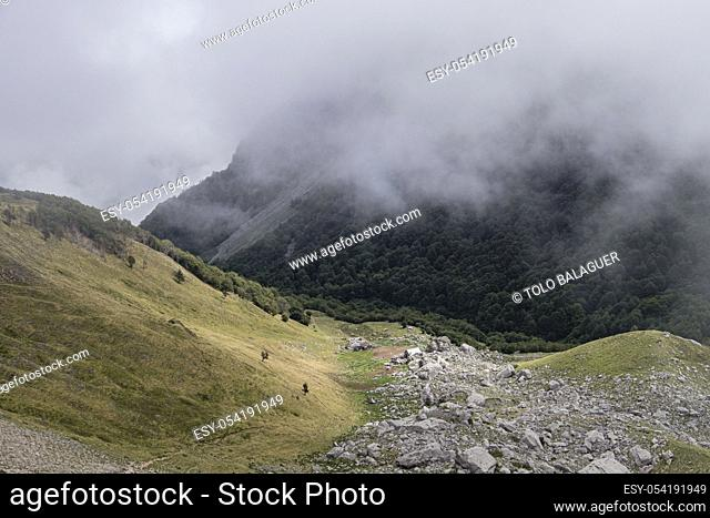 cabañas de Ansabere, región de Aquitania, departamento de Pirineos Atlánticos, Francia