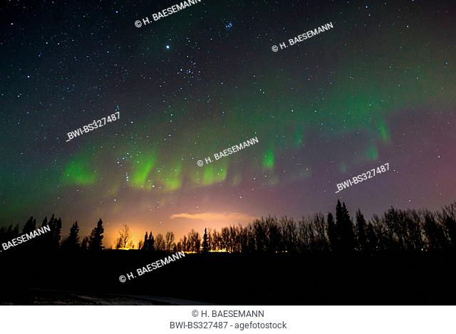 aurora and starry sky with Jupiter over forest silhouette, Norway, Troms, Kvaloeya, Kattfjordeidet