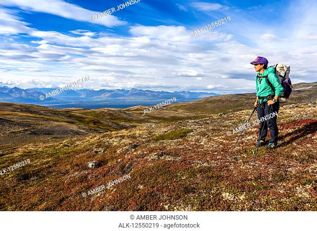 Woman taking in the view, backpacking on the Kesugi Ridge Trail, Denali State Park, in the autumn with the Alaska Range in the background