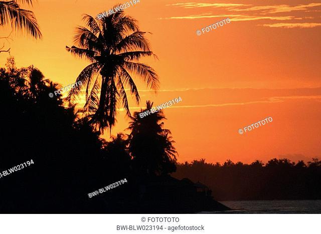 palm beach at sunset, Indonesia
