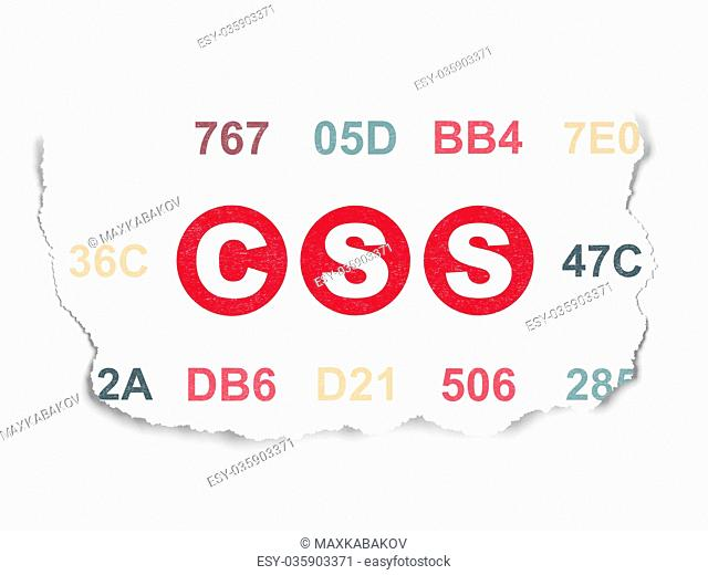 Database concept: Css on Torn Paper background