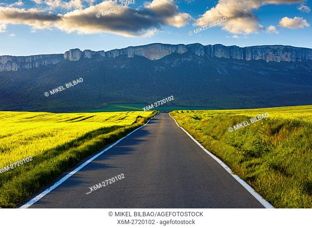Loquiz mountain range, road and cereal crop. Tierra Estella, Navarre, Spain, Europe
