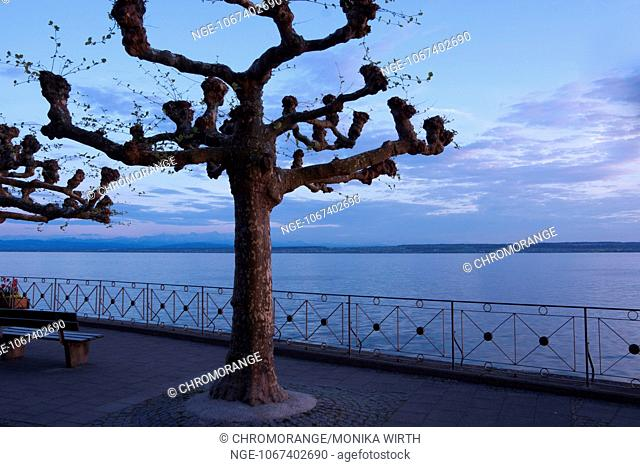 Evening mood at Lake Constance, Meersburg, Baden-Wuerttemberg, Germany, Europe