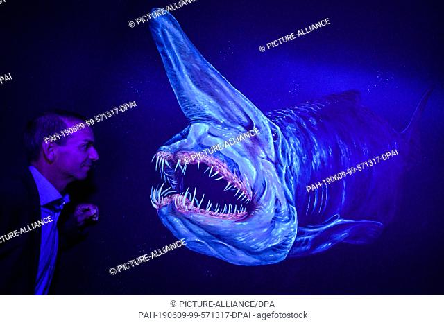 29 May 2019, Bremen, Bremerhaven: Arne Dunker, managing director of Klimahaus Bremerhaven, looks at a picture of a fish showing its teeth painted on the wall of...