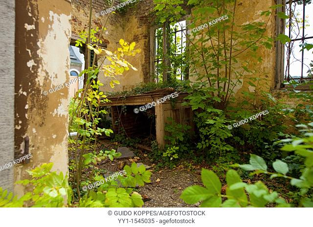 Amay, Belgium. Overgrown sacristy in an abandoned abbey