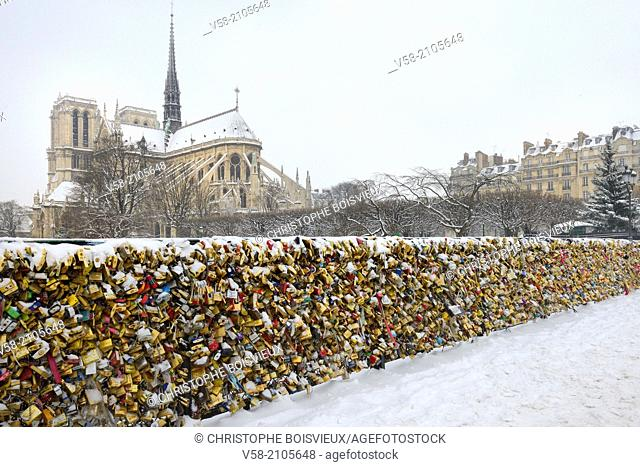 France, Paris, World Heritage Site, Love locks on Notre Dame bridge and Notre Dame cathedral
