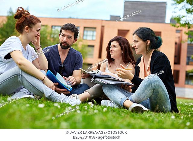 Students reviewing notes on campus lawn