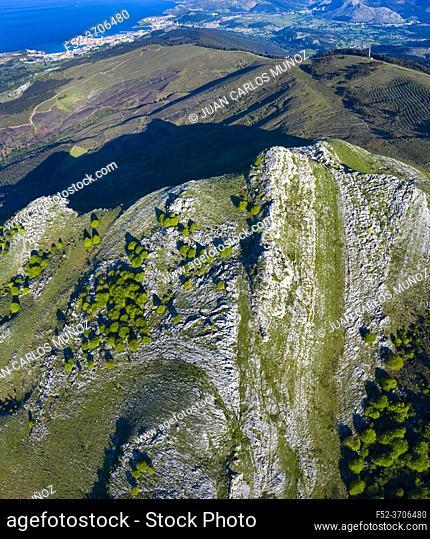 Beech forest in springtime, Cerredo Mountain, Montaña Oriental Costera, Castro Urdiales Municipality, Cantabrian Sea, Cantabria, Spain, Europe