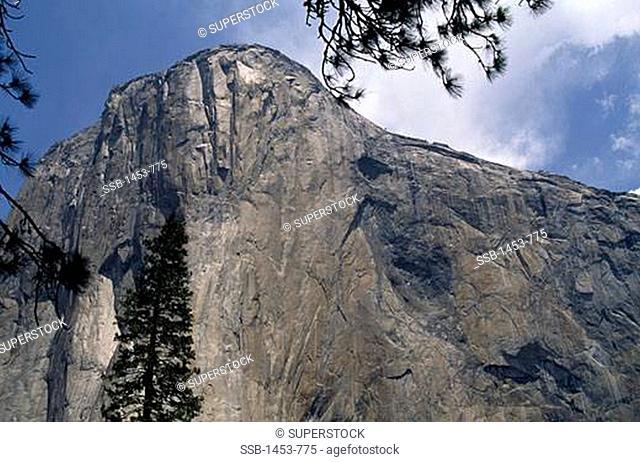 Low angle view of a mountain peak, El Capitan, Yosemite National Park, California, USA
