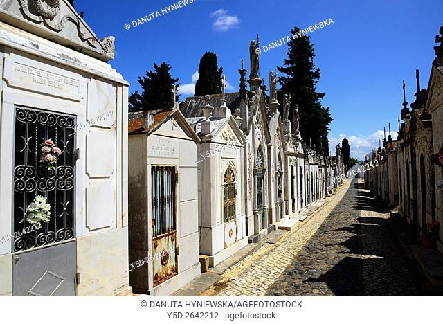 Old cemetery in the center of Lagos old town, Lagos, Faro district, Algarve, Portugal, Europe