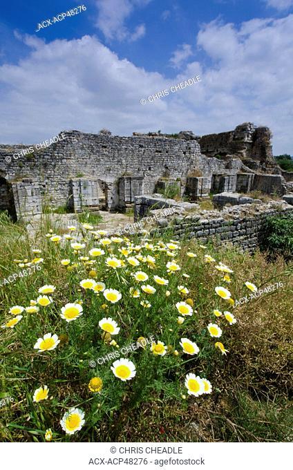 Miletus, an ancient Greek city on the western coast of Anatolia, Turkey