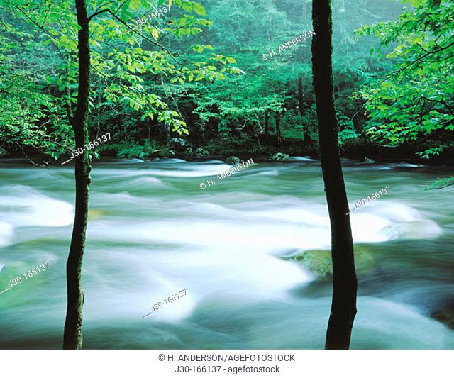 Little River. Great Smoky Mountains National Park. Tennessee. USA