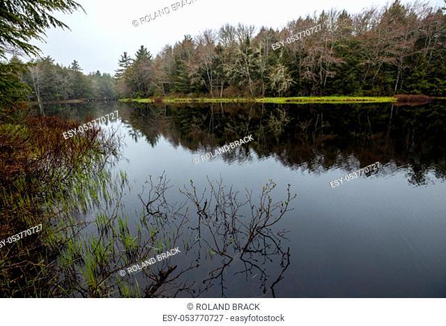 Lake and River of the Kejimkujik National Park of Nova Scotia Canada