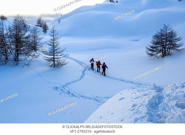 Hikers on snowshoes advance in fresh snow in the Engadine. Canton of Graubunden. Switzerland. Europe