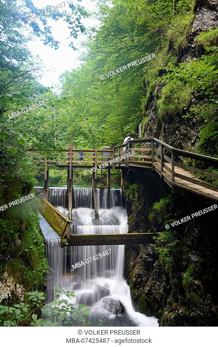 Göstling an der Ybbs, open air museum Erlebniswelt Mendlingtal, Timber rafting, river Mendlingbach, weir, Mostviertel region, Niederösterreich, Lower Austria