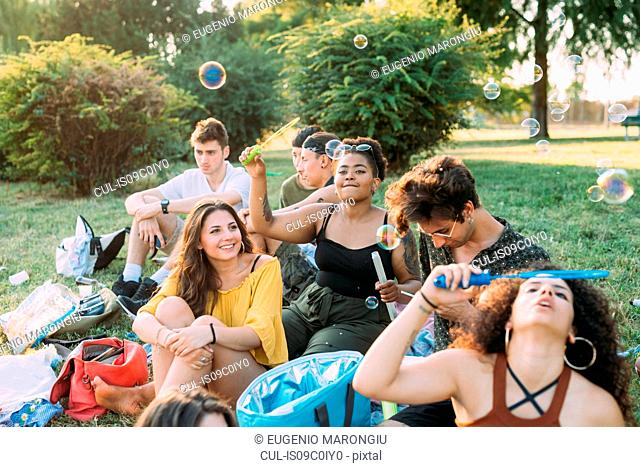 Group of friends relaxing, blowing bubbles at picnic in park