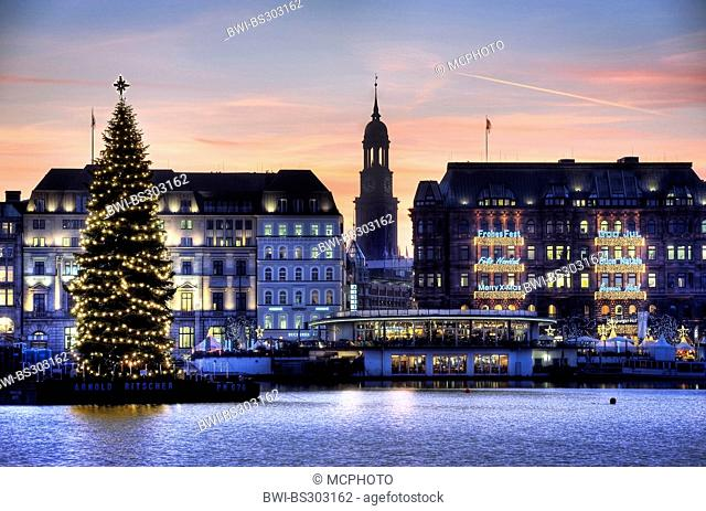 illuminated Christmas tree on Binnenalster and Michel in inner city at yule tide, Germany, Hamburg