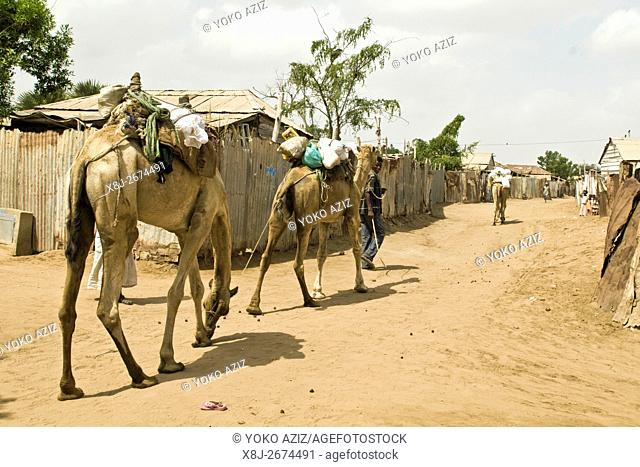 Afar people, Massawa, Eritrea