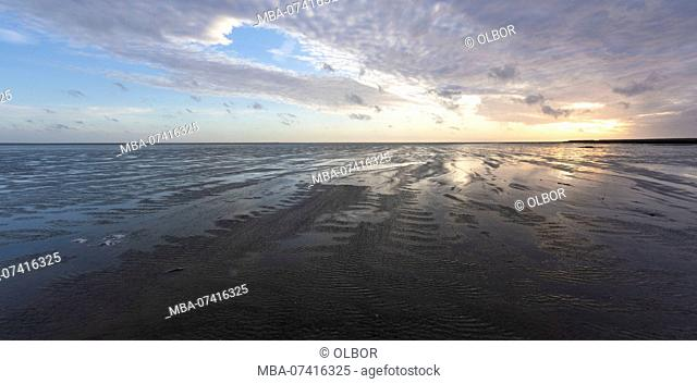 Germany, Schleswig-Holstein, Hallig Hooge, tideland in the evening at sunset