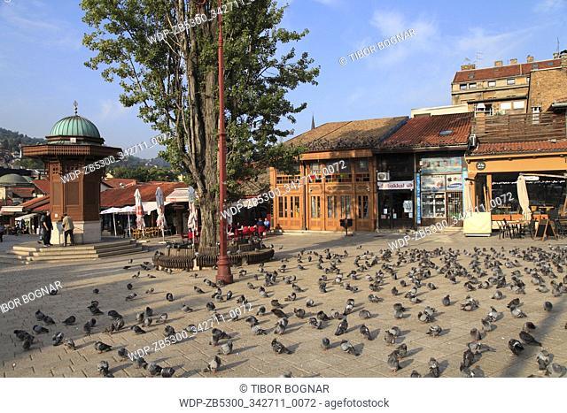 Bosnia and Herzegovina, Sarajevo, Bascarsija Square, Sebilj Fountain, pigeons