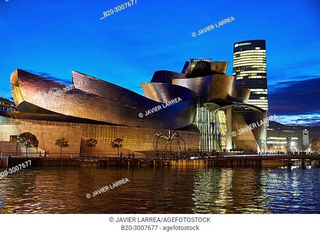Nervion river, Guggenheim Museum, Bilbao, Bizkaia, Basque Country, Spain, Europe