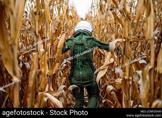 Young spaceman walking through corn field