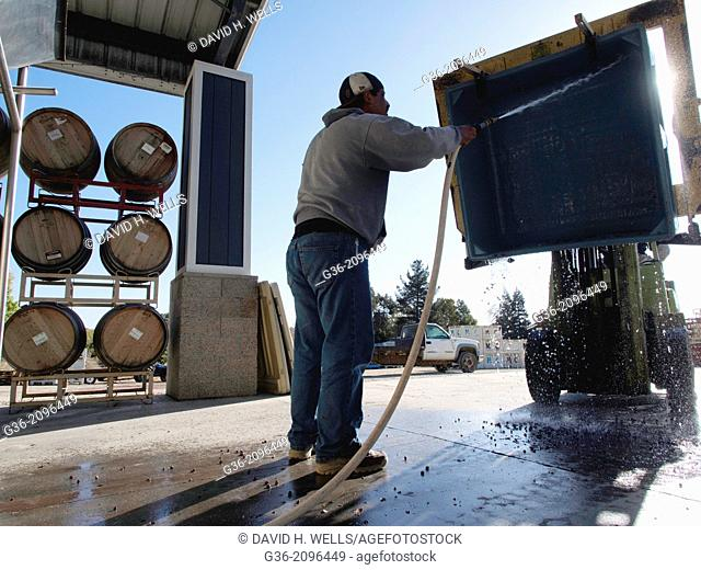 Man cleaning tub with water hose at winery, Paso Robles, California