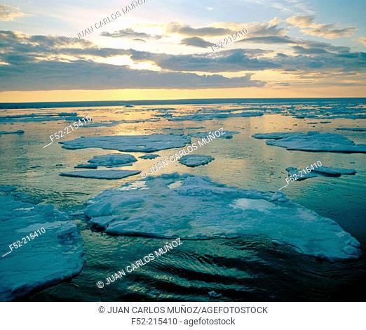 Brasvellbreen Glacier. Spitsbergen. Norway