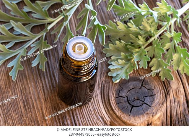 A bottle of wormwood essential oil with fresh Artemisia Absinthium twigs