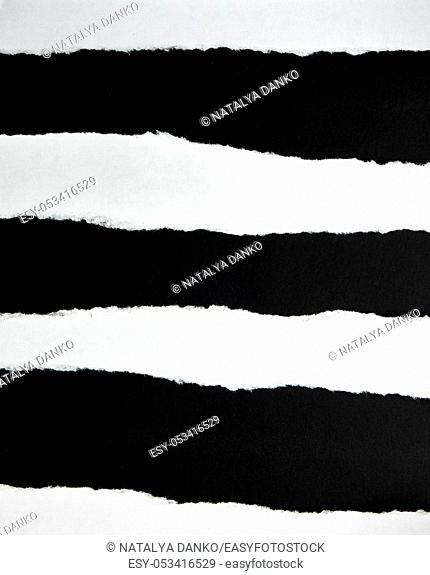torn blank white paper strips against a black background , close up