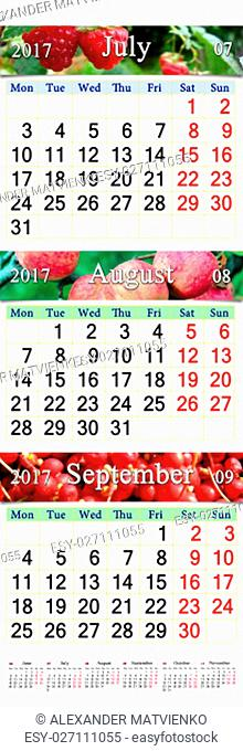 calendar for three months July August and September 2017 with images of raspberry apples and schisandra. Calendars for mass printing and using as wall calendars...