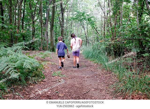 Children walking on a path in the woods
