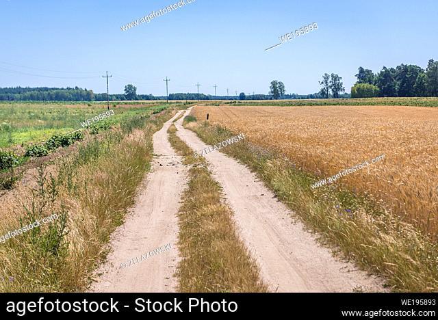 Country road in Drawsko County in West Pomerania region of Poland