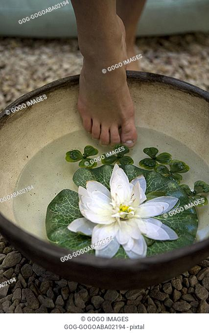 Woman stepping into bowl of water and water lilies