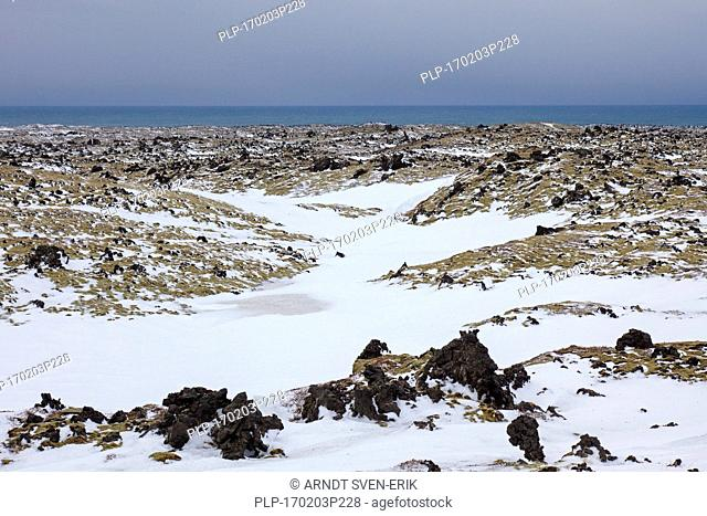 Lava field covered in snow at the Snaefellsjoekull National Park in winter on the Snæfellsnes peninsula in Iceland