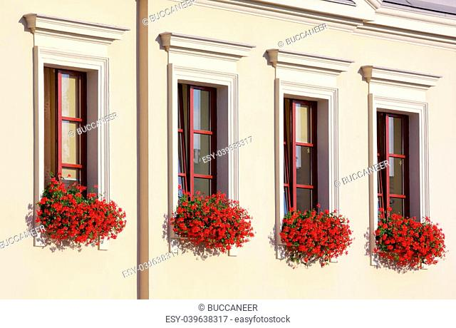 Four flowery windows in a row