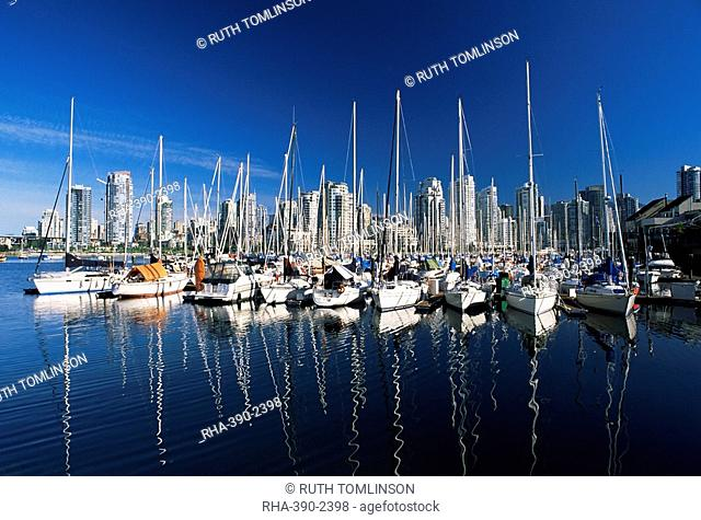 Yachts moored in False Creek marina, with downtown skyscrapers behind, Vancouver, British Columbia B.C., Canada, North America