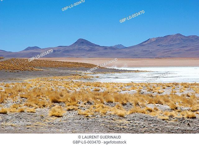 Estacion termale, Reserva nacional de fauna andina Eduardo Abaroa, Deserto do Lipez, Departamento de Potosi, Sud Lipez Province, La Paz, Bolívia