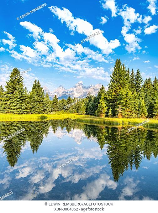 Water reflects cloudy skies and forest in front of the imposing Teton Mountain Range, Grand Tetons National Park, Teton County, Wyoming. USA