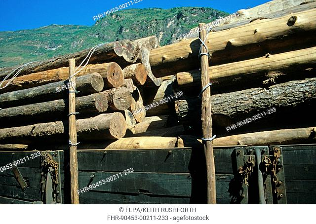 Forestry, timber laden wagons on Chengdu to Kunming railway, China