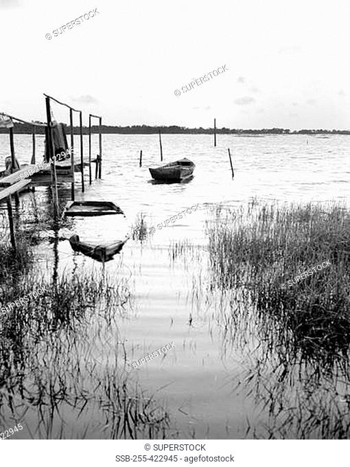 USA, Florida, Cedar Key, Sunset with rowboats on lake