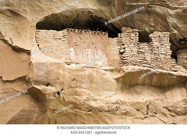 Target Ruins, Ancestral Pueblo, up to 1, 000 years old, Bears Ears National Monument, Utah, USA