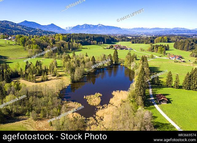 Germany, Bavaria, Bad Heilbrunn, Drone view of Schonauer Weiher lake in summer